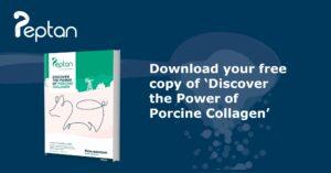 porcine brochure